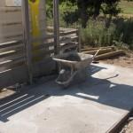 Installation des caches-containers à Javols, en Lozère.